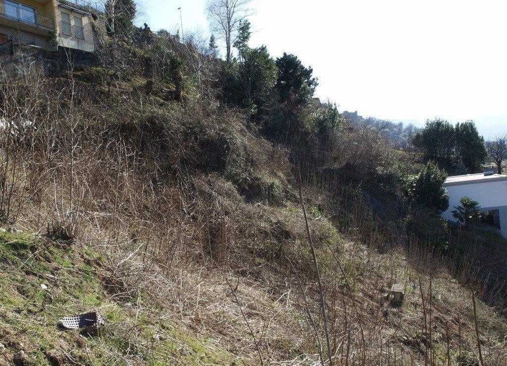 Grundstueck kaufen Bellinzona 4180/2352-8