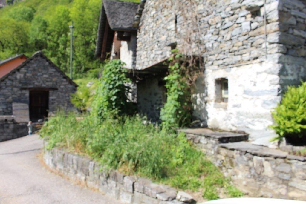 Haus kaufen Cavergno 4180/2386-2