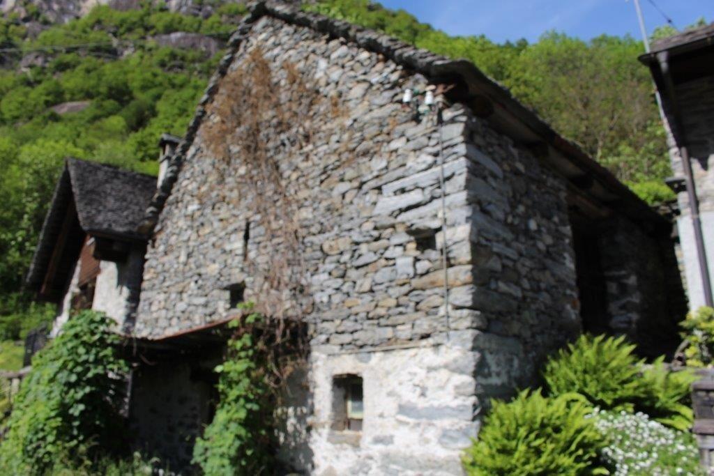 Haus kaufen Cavergno 4180/2386-3
