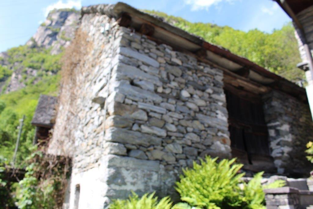 Haus kaufen Cavergno 4180/2386-5