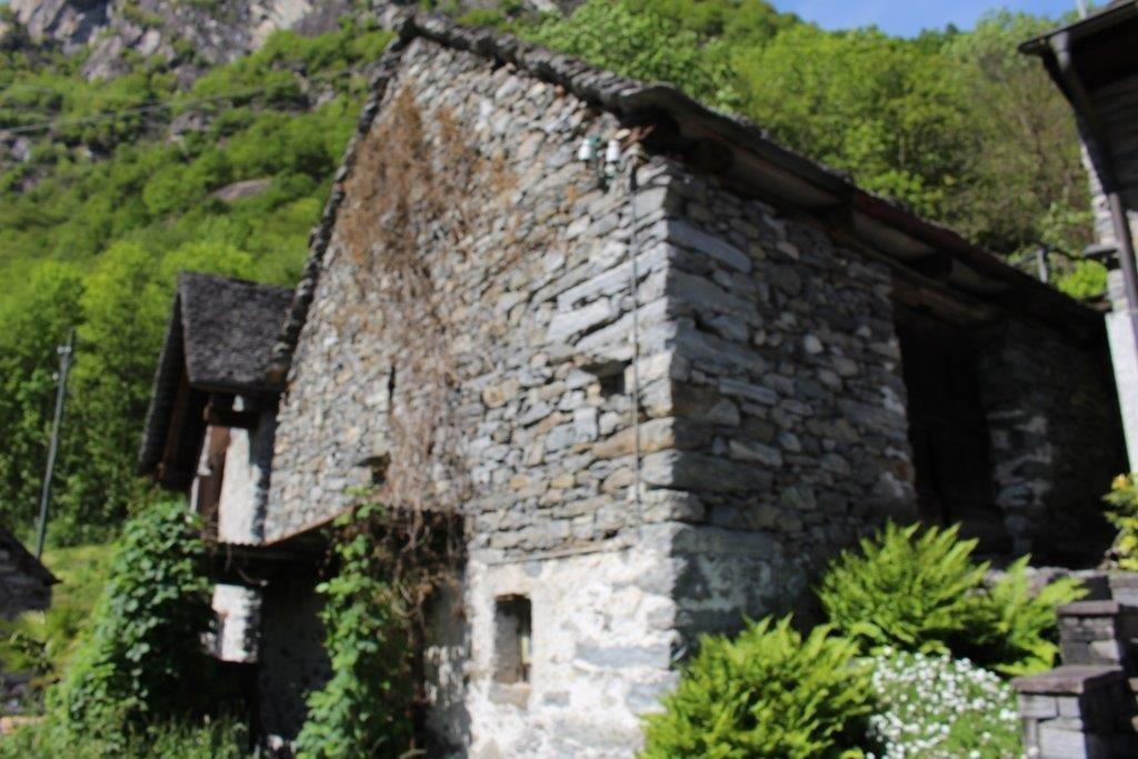 Haus kaufen Cavergno 4180/2386-1