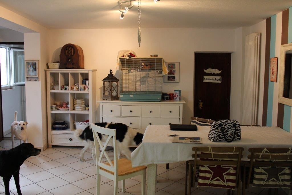 Haus kaufen Losone 4180/2391-2