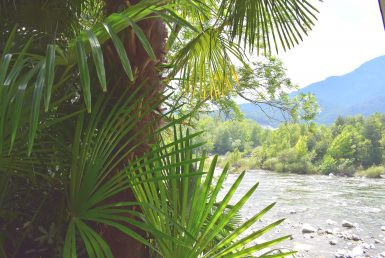 via valle maggia 179-10