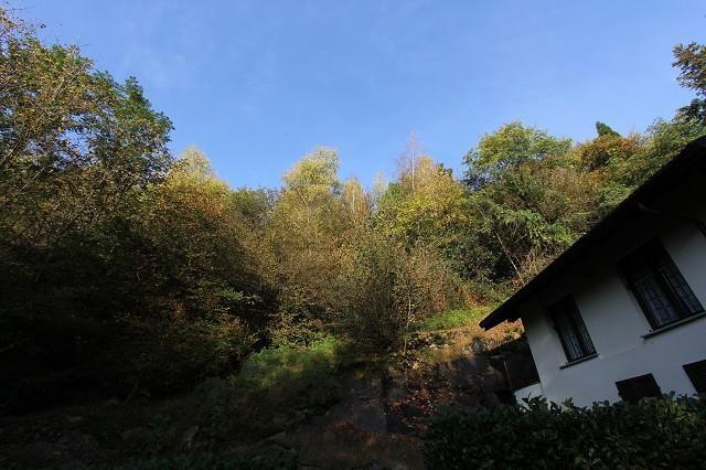 Haus kaufen Brissago 4180/2852-6