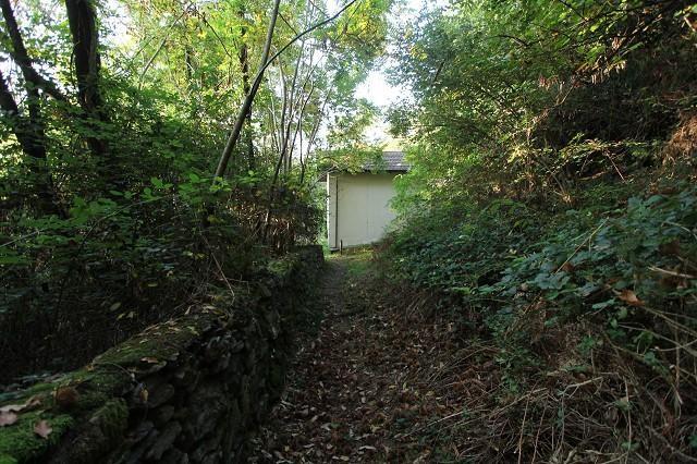 Haus kaufen Brissago 4180/2852-9