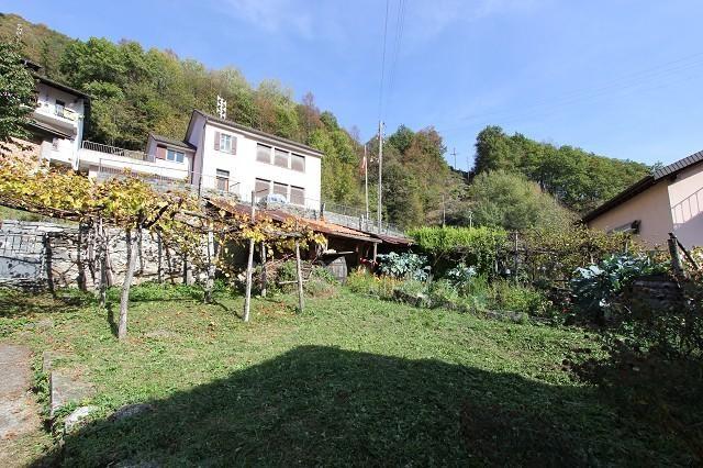 Haus kaufen Camedo 4180/2846-2