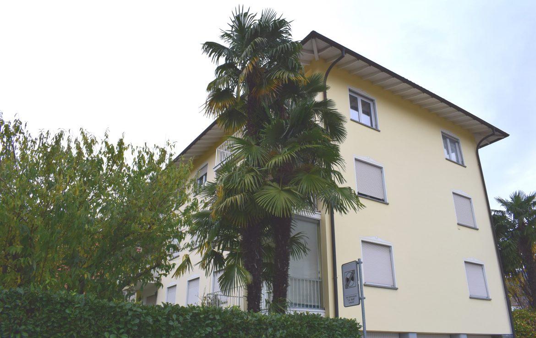 Wohnung Cesura Losone HM 12