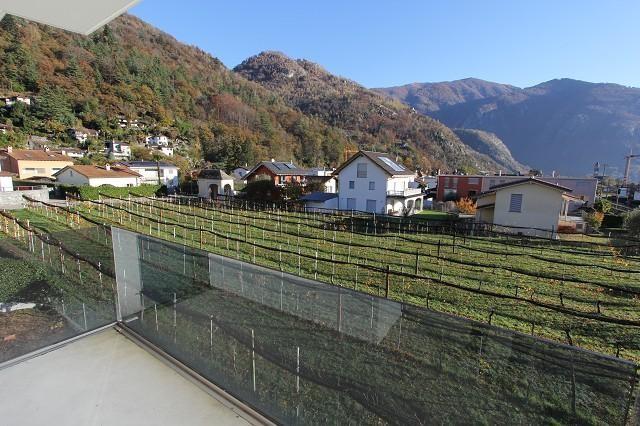 Haus kaufen Cavigliano 4180/2870-4