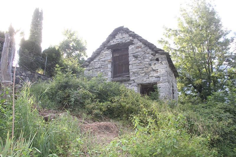 Haus kaufen Palagnedra 4180/1957-7