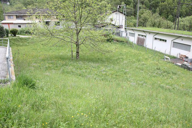 Grundstueck kaufen Cavergno 4180/2107-4