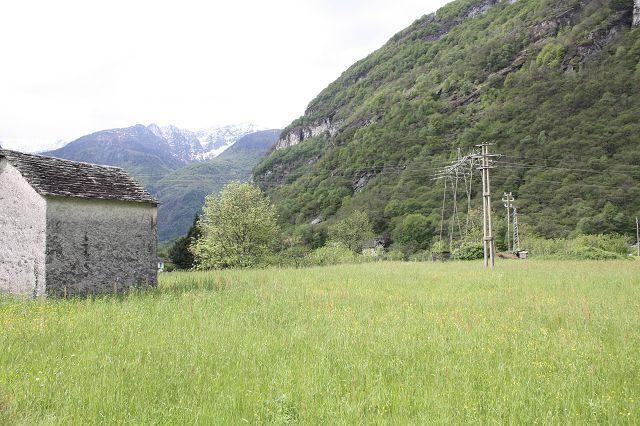 Grundstueck kaufen Cavergno 4180/2107-7