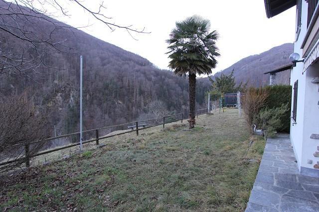 Haus kaufen Camedo 4180/2901-5