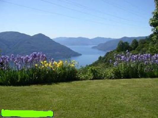 Haus kaufen Ronco sopra Ascona 4180/1011-4