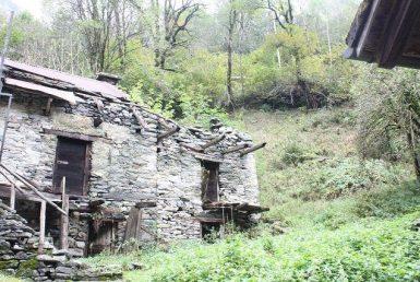 Haus kaufen Vergeletto 4180/1694-1